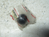 Picture of Claas 0006317520 6317520 631752.0 Ball Handle