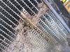 Picture of John Deere TCA51004 Radiator